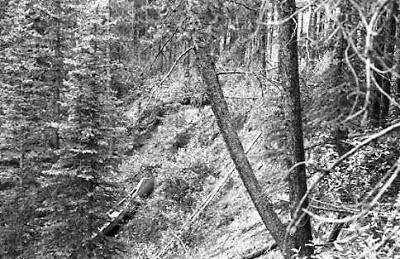 Canoe on the mountain #29