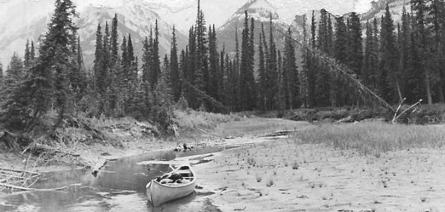 morning on tkhe bow river